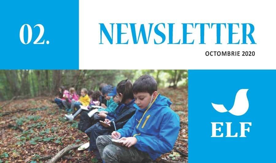 Newsletter Nr. 2